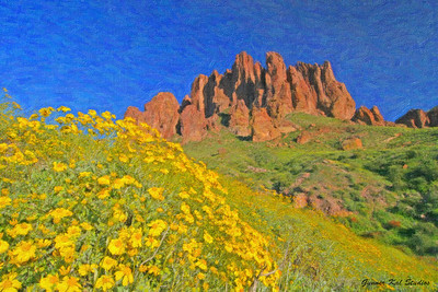 Superstition Mountains and Flowers