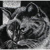 """Diva""<br /> wood engraving 4""x 5""<br /> edition of 20: 2012"