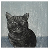 """Gato""<br /> Wood engraving 5""x5""<br /> edition of 10; 2007<br /> BIG Arts juried show 2/08"