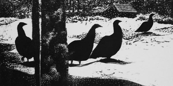 """Wild Turkeys II""<br /> wood engraving 3.25x6.5""<br /> edition of 15: 2013"