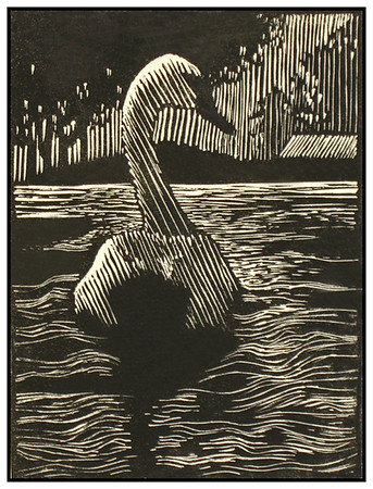 """Mute Swan""<br /> wood engraving 3""x4""<br /> edition of 20: 2012"