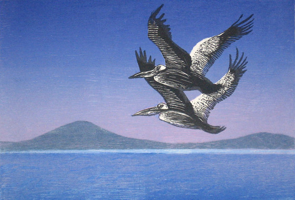 """Pelican Dawn 3""<br /> woodcut / wood engraving<br /> edition of 10; 2009"