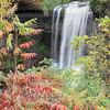 Wolcott Falls, NY