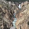 Lower Falls & Yellowstone River