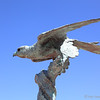 Bird Sculpture at Chios Basin Visitor Center