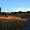 Wandering Trail, Sunrise Visitor Center, Mount Rainier National Park