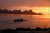 Morning Rowers, Lake Washington