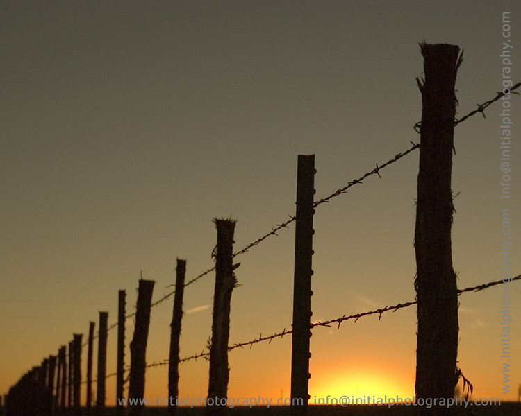 "Texas fence (more Texas pictures <a href=""/gallery/1400653"">here</a>)"