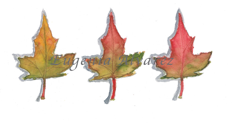 Fall Leaves - Watercolor