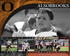 <center>5 Photos - 16x20 Customized Metallic Print $49.99 plus shipping and tax Orioles Football v4