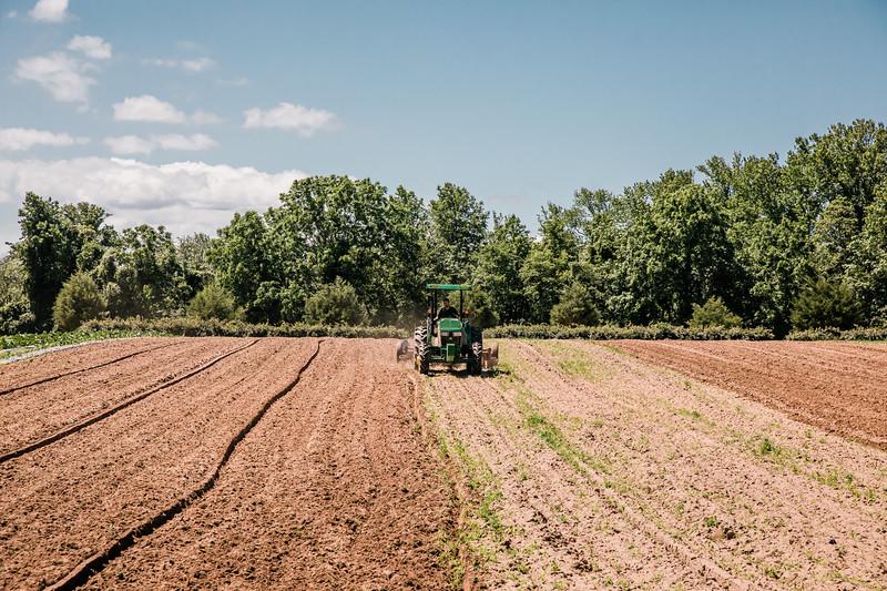 Farming20193
