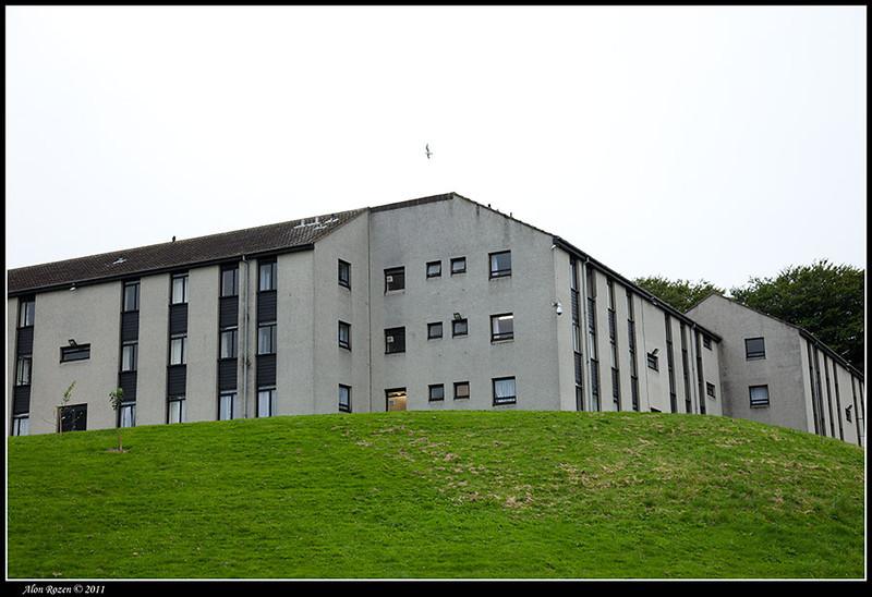 Aberdeen 2011-61 small