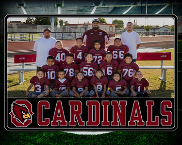mighty mites team pic 2019