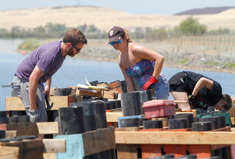 Jeremy Miller and Amber Vitito set up the racks for the Fourth of July firework show July 3, 2017 at the Thermalito Forebay in Oroville, California.  (Emily Bertolino -- Mercury-Register)