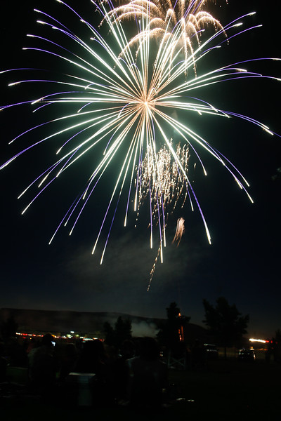 Fourth of July fireworks sparkle over the Thermalito Forebay July 4, 2017 in Oroville, California.  (Emily Bertolino -- Enterprise-Record)