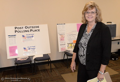 Butte County Clerk-Recorder Candace Grubbs smiles in front of election materials at the Butte County Hall of Records in Oroville, Calif. Monday Oct. 24, 2016. (Bill Husa -- Enterprise-Record)