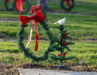 Eastern Star organization members are laid wreaths on the graves of veterans Friday December 1, 2017 at Memorial Park Cemetery in Oroville, California. (Emily Bertolino -- Enterprise-Record)