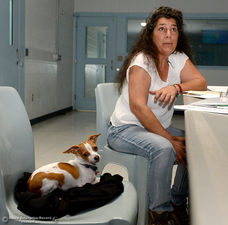 . Leonora King, a Paraprofessional who works at Table Mountain School talks about Samson, a therapy dog who works at Table Mountain School during an interview at the Juvenile Hall facility in Oroville, Calif. Wed. April 11, 2018. (Bill Husa -- Enterprise-Record)
