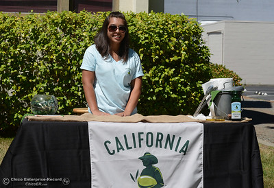 Cierra Venegas, of California Ripe Olives offers samples of oil during The Olive Festival on Saturday, June 18, 2016, at the Ehmann Home in Oroville, California. (Dan Reidel -- Enterprise-Record)