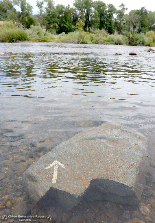 . A rock with an arrow on it slightly underwater is seen along the Feather River in Oroville, Calif. Wed. May 30, 2018. (Bill Husa -- Enterprise-Record)