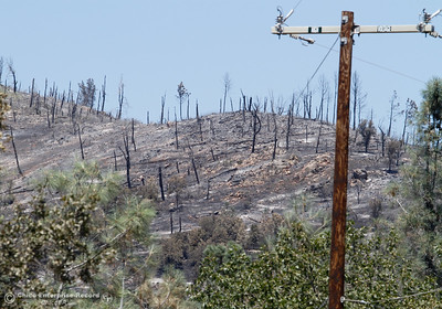 The burnt hilltop along Swedes Flat Road Thursday July 13, 2017 in Oroville, California.  (Emily Bertolino -- Enterprise-Record)
