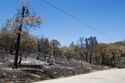 The Wall Fire devastation along Swedes Flat Road Thursday July 13, 2017 in Oroville, California.  (Emily Bertolino -- Enterprise-Record)