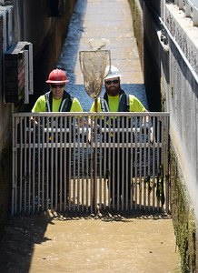 Department of Fish & Wildlife Technicians Jeff Cutuli left and Joe Amoroso push a gate down the fish ladder as they and other technicians shut down the fish ladder and crowd out the remaining fish at the Feather River Fish Hatchery in Oroville, Calif. Mon. July 17, 2017. (Bill Husa -- Enterprise-Record)