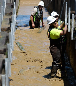 Department of Fish & Wildlife Technicians remove stop logs as they work to shut down the fish ladder and crowd out the remaining fish at the Feather River Fish Hatchery in Oroville, Calif. Mon. July 17, 2017. (Bill Husa -- Enterprise-Record)