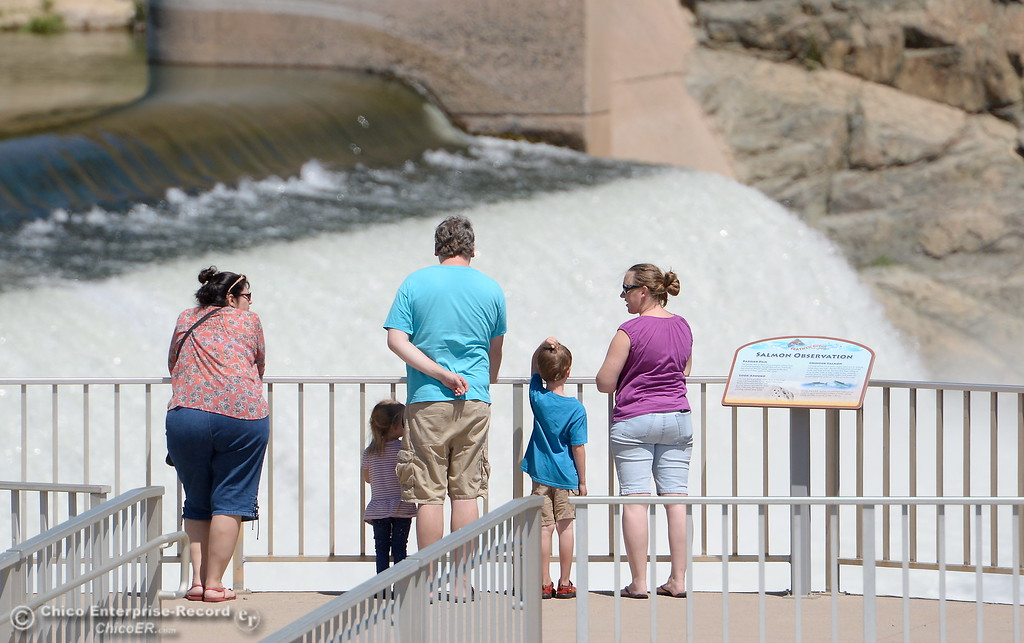 . A family stops by to look for jumping salmon at the Fish Barrier Dam in Oroville, Calif. Mon. July 24, 2017.  There was a dead fish floating in the water just below the platform. (Bill Husa -- Enterprise-Record)