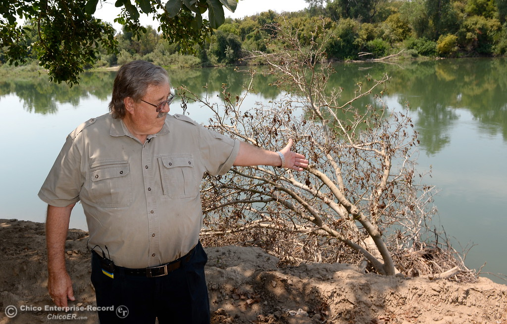 . J.E.M. Farms Manager George Onyett explains how Walnut orchards were damaged along the Feather River after a press conference announcing the filing of a claim against DWR for damages to the orchard in Oroville, Calif. Thurs. Aug. 3 2017. (Bill Husa -- Enterprise-Record)