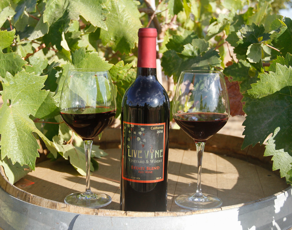 Live Vine Wines by Susan and Shawn Smith from estate grown grapes September 22, 2017 in Oroville, California. (Emily Bertolino -- Mercury Register)
