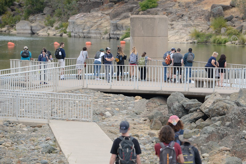 People gather on the viewing platform to watch the salmon at the Fish Barrier Dam in the Feather River in Oroville, Calif. Friday Sept. 22, 2017. (Bill Husa -- Enterprise-Record)