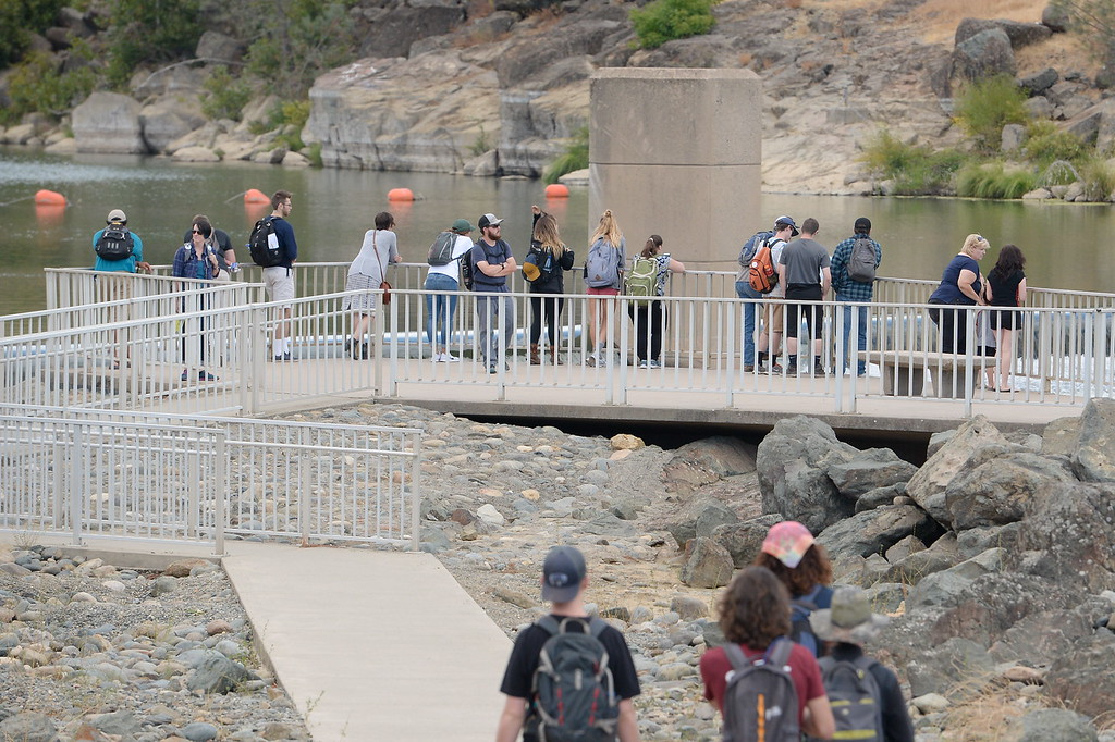 . People gather on the viewing platform to watch the salmon at the Fish Barrier Dam in the Feather River in Oroville, Calif. Friday Sept. 22, 2017. (Bill Husa -- Enterprise-Record)