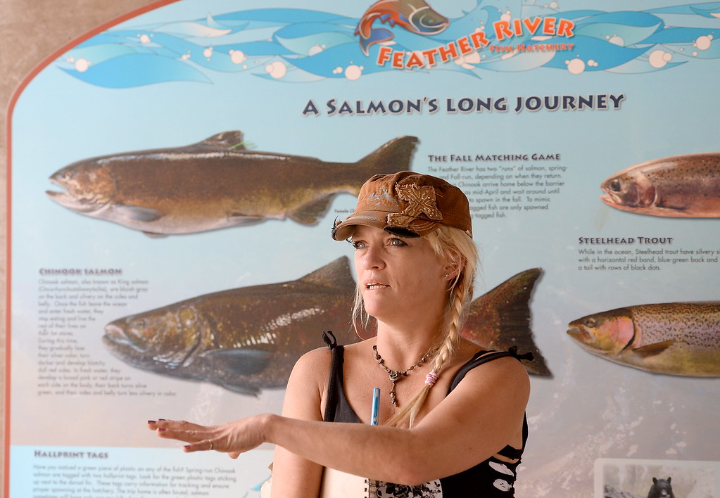 . Michele Marrquette of Paradise talks about the fish at the Feather River Fish Hatchery Salmon Ladder viewing area in Oroville, Calif. Monday Sept. 18, 2017. (Bill Husa -- Enterprise-Record)