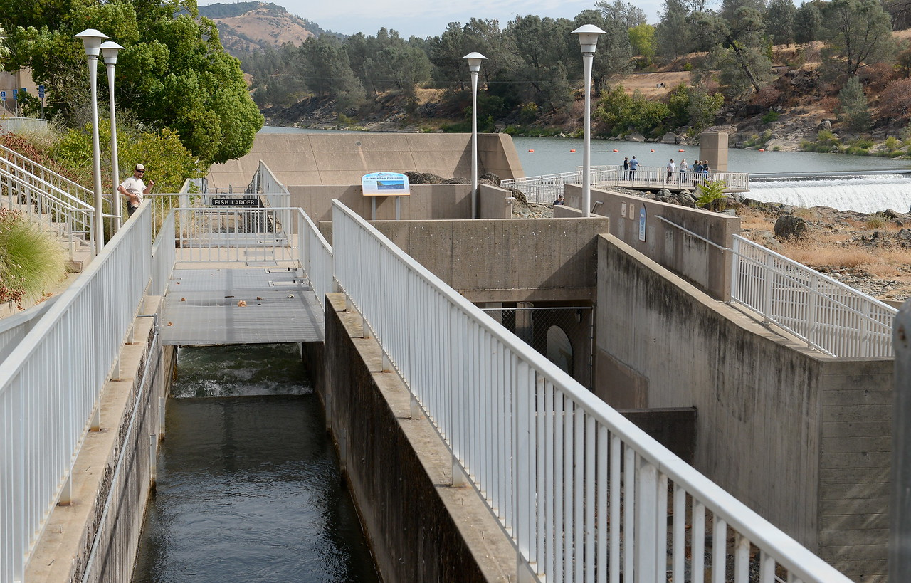 People watch for fish jumping near the Fish Barrier Dam Monday Sept. 18, 2017. The Feather River Fish Hatchery Salmon Ladder and viewing area opened today. (Bill Husa -- Enterprise-Record)