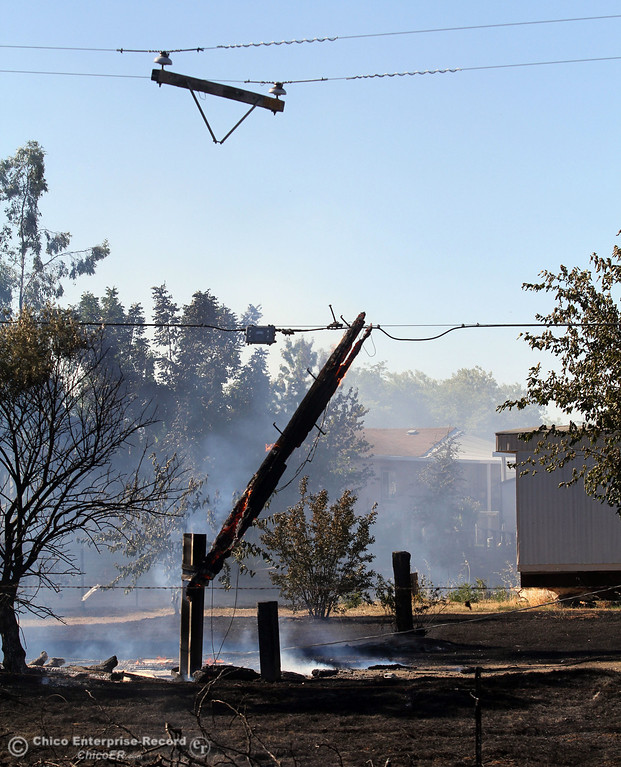 . A power line pole hangs after it caught on fire and snapped the line while Cal Fire - Butte County firefighters battle a fire off Vineyard Lane Friday, July 12, 2013 in Oroville, Calif.  (Jason Halley/Chico Enterprise-Record)