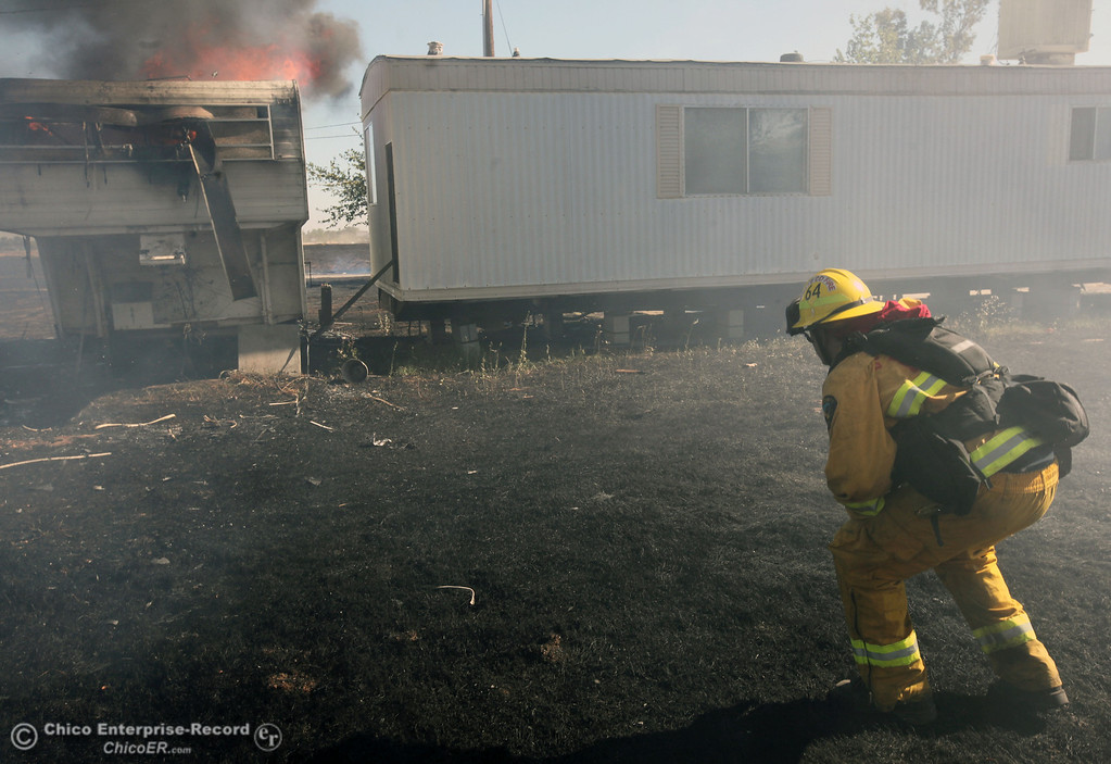 . Cal Fire - Butte County firefighter Ben Holliday checks on a trailer on fire as they to battle a fire off Vineyard Lane Friday, July 12, 2013 in Oroville, Calif.  (Jason Halley/Chico Enterprise-Record)