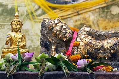 © 2012 KT WATSON Offerings at Wat Lokayasutharam (Temple of the Reclining Buddha) Thailand.