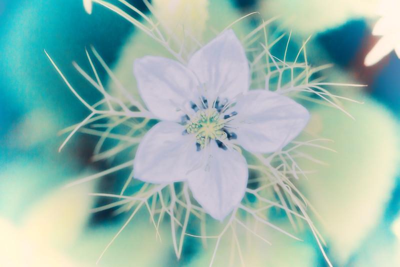 2014_05_31 - KTW_BULWICK_Macro_041
