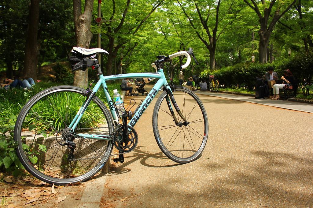 3pm - 3:15pm (Utsubo Park)
