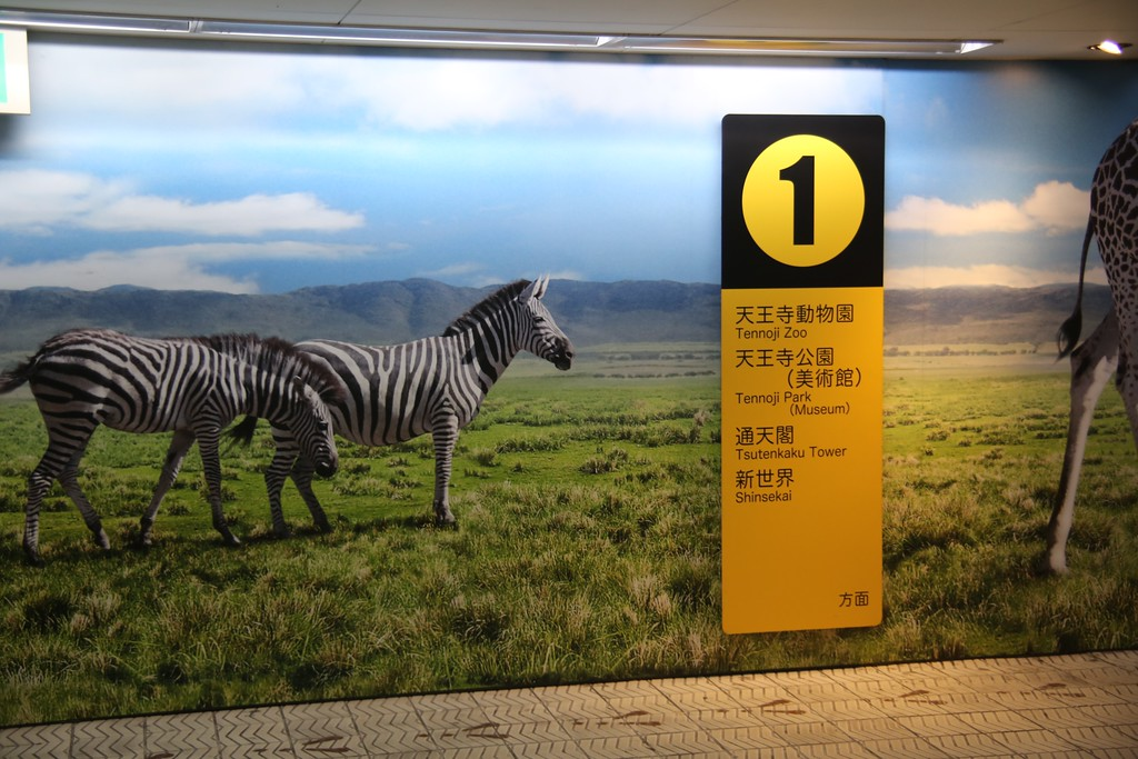 Zebras point the way to Shinsekai