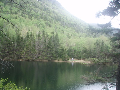 A couple of scenic ponds (called the Greeley Ponds) are nestled in the height of land in the notch.