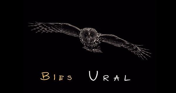 "Diaporama ""Bies Ural"" 2012"