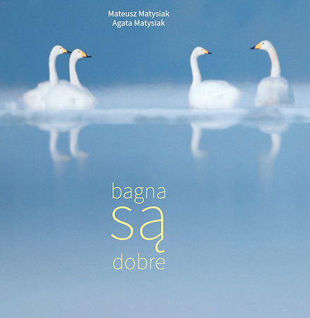 """Autorski album """"Bagna są dobre"""" 2017"""