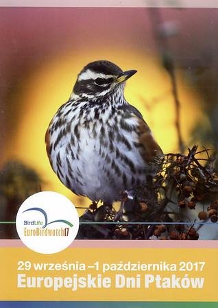 Ptaki 3/2017, BirdLife EuroBiirdwatch 2017 Fotografia droździka na reklamie OTOP Europejskich Dni Ptaków 2017 wrzesień 2017