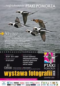 """Plakat wystawy """"Najpiękniejsze ptaki Pomorza"""", 2007"""