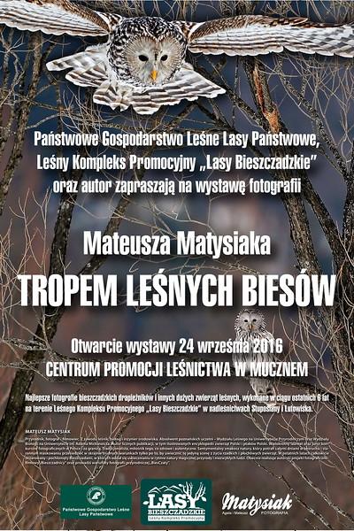 """Plakat wystawy """"Tropem leśnych Biesów"""" w Centrum Promocji Leśnictwa w Mucznem, 2016"""