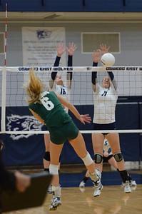 Oswego East Girls Volleyball Vs Waubonsie Valley 2013 444