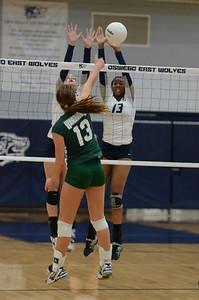Oswego East Girls Volleyball Vs Waubonsie Valley 2013 429