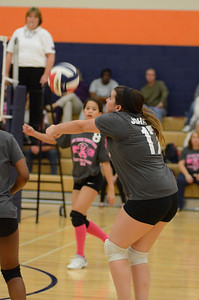 Girls Volleyball Vs Oswego 2013 335